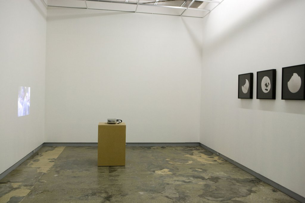 Debra Phillips | <em>Blow</em> series and <em>Parade</em> (installation view) 2009