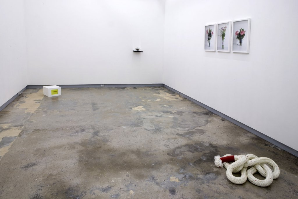 <em>Group show</em> | installation view, 4 February – 6 March 2010