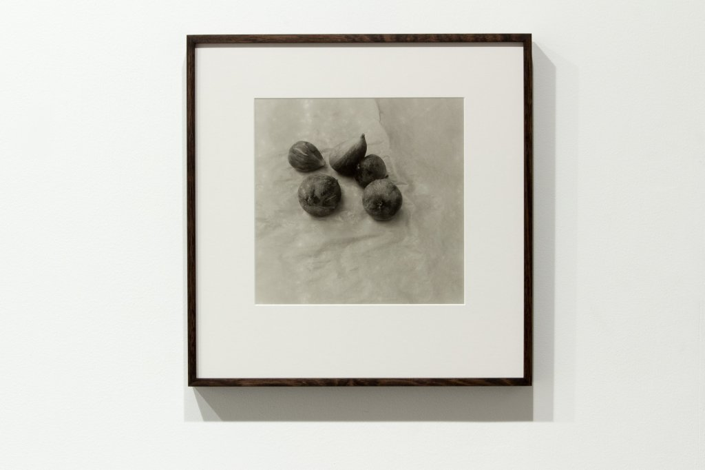 <div>Jane Brown, Vanitas, 2011–13, fibre-based, gelatin silver print, 46 x 44 cm, edition o</div>