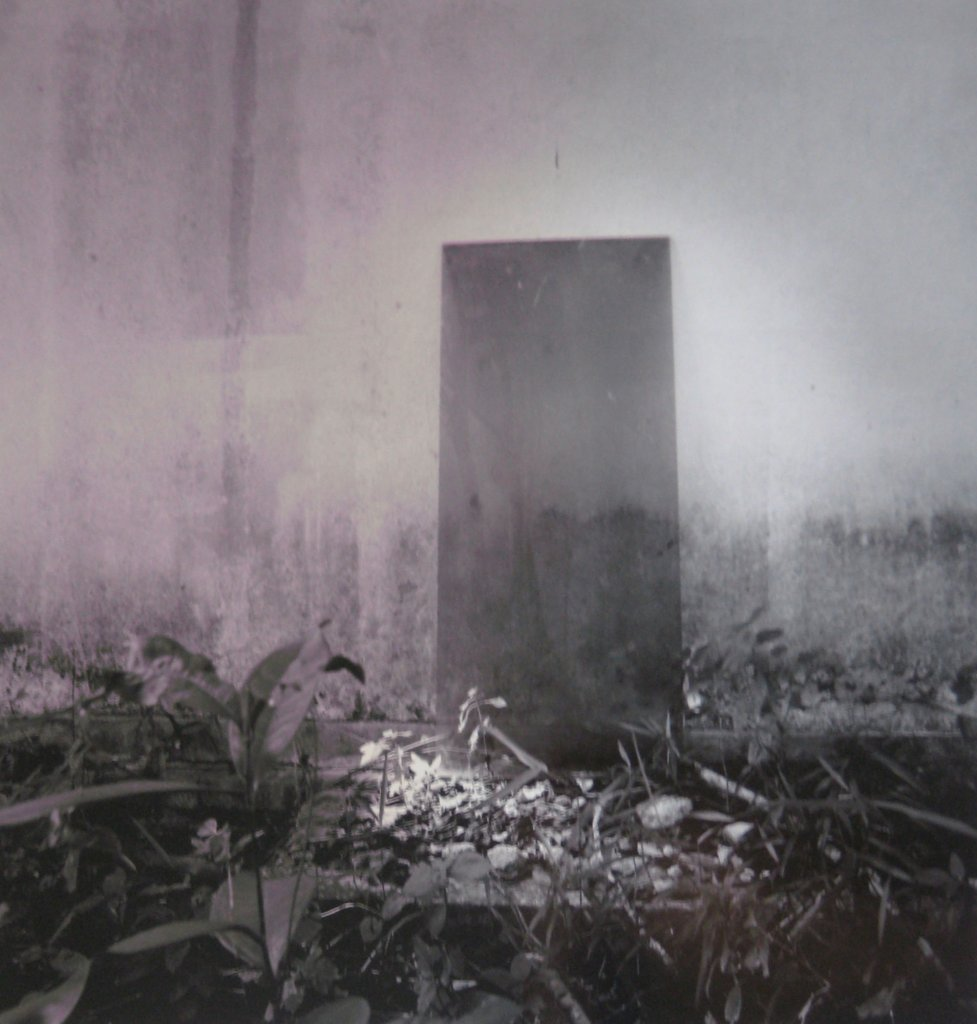 Simryn Gill <em>My own private Angkor 26 </em>2007–9 silver gelatin photographs 69 x 61 cm